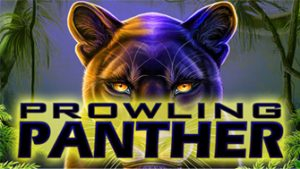 Play For Free Prowling Panther Slot Machine Online